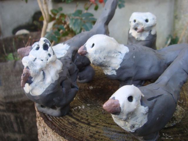 Les oiseaux Ecole Sancoins M.Guehl